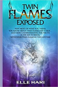 twin flames exposed book