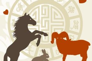 chinese-zodiac-relationship